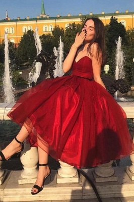 Ruby Strapless Tea Length Prom Dress | Chic Organza Dress for Bach to School