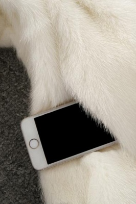 Women's Fashion Hooded White Fox Fur Coat_19