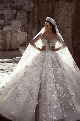 Glittery Floral Bridal Gowns  | See Through Neck Long Sleeves Ball Gown Wedding Dresses_1