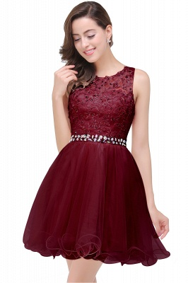 Cheap A-line Knee-length Tulle Prom Dress with Appliques in Stock_3