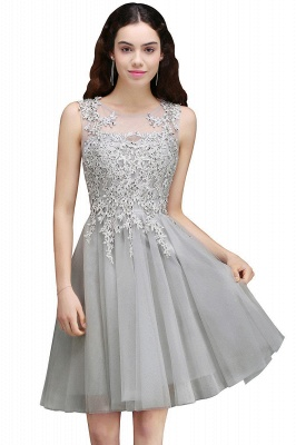 Lace Appliques Silver Jewel Sleeveless Short Homecoming Dress_3