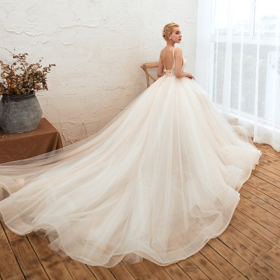 Gorgeous Spaghetti Straps V-neck Floor Length A-line Lace Tulle Wedding Dresses_7