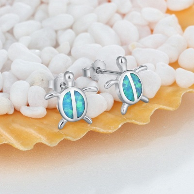 Personalized Sterling 925 Silver Earrings Jewelry_3