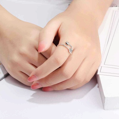 Sterling Silver Ring Jewelry For Ladies_6
