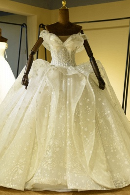 Gorgeous Lace-up Tulle Ball Gown Wedding Dress | Haute Couture Bridal Gowns Series_1