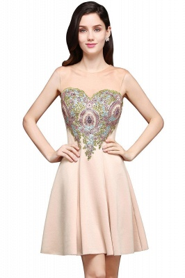 A-line Scoop Chiffon Short Homecoming Dress With Appliques_1