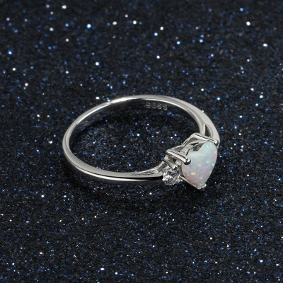 Sterling Silver Ring Jewelry For Women_5