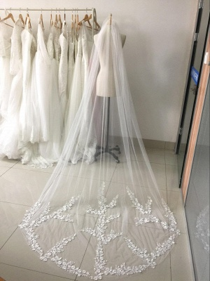 One Layer Lace Tulle Wedding Veil