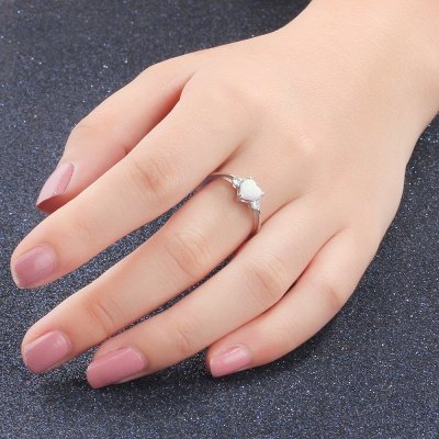 Sterling Silver Ring Jewelry For Women_7