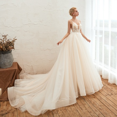 Gorgeous Spaghetti Straps V-neck Floor Length A-line Lace Tulle Wedding Dresses_9