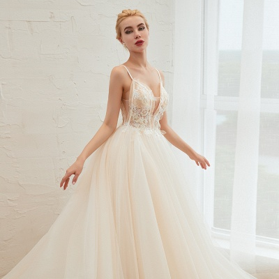 Gorgeous Spaghetti Straps V-neck Floor Length A-line Lace Tulle Wedding Dresses_18