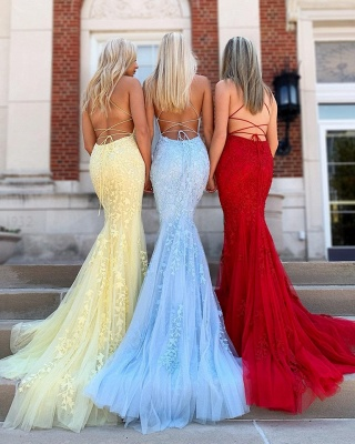 Criss-cross Straps Lace Fitted Long Prom Dresses | Trendy Applique Evening Dresses_2