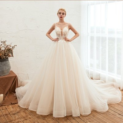 Gorgeous Spaghetti Straps V-neck Floor Length A-line Lace Tulle Wedding Dresses_3