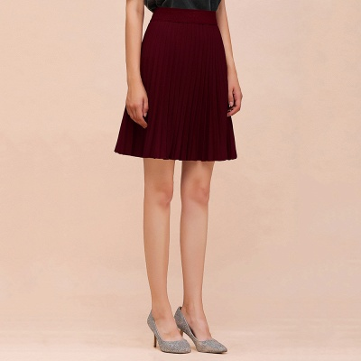 A-line Knitted Knee Length Pleated Skirt_50