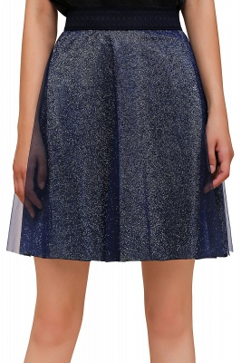 Sparkly Knee Length Metallic A-line Skirt_15