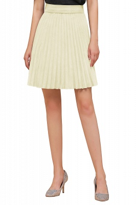 A-line Knitted Knee Length Pleated Skirt_113