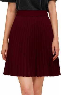 A-line Knitted Knee Length Pleated Skirt_146
