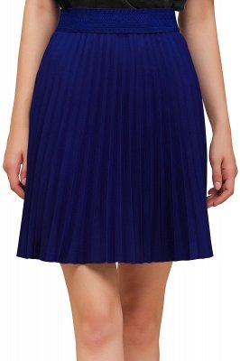 A-line Knitted Knee Length Pleated Skirt_157