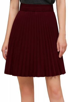 A-line Knitted Knee Length Pleated Skirt_139