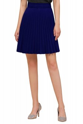 A-line Knitted Knee Length Pleated Skirt_100