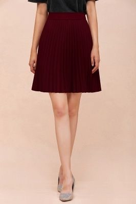 A-line Knitted Knee Length Pleated Skirt_136