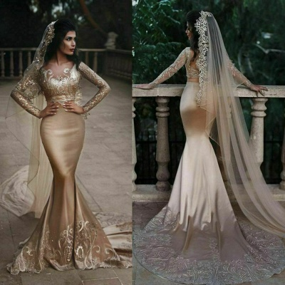 Sexy Two Pieces Long Sleeve Applique Sequined Mermaid Wedding Dresses | Backless Fit And Flare Bridal Gown_3