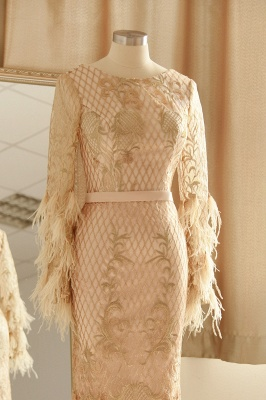 Luxury Jewel Long sleeve V Back Applique Floor Length Sheath Prom Dresses With Feathers_4