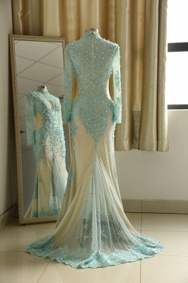 Elegant Long Sleeve High Neck Applique Floor Legnth Sheath Prom Dresses_3