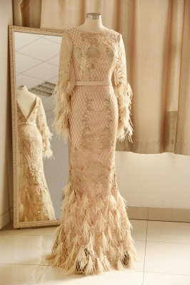 Luxury Jewel Long sleeve V Back Applique Floor Length Sheath Prom Dresses With Feathers_1