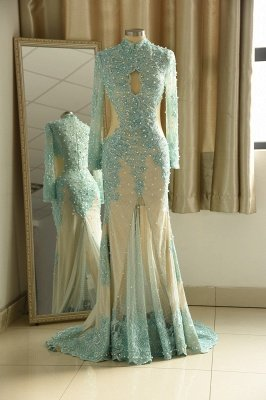 Elegant Long Sleeve High Neck Applique Floor Legnth Sheath Prom Dresses_2