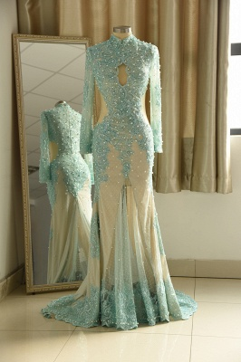 Elegant Long Sleeve High Neck Applique Floor Legnth Sheath Prom Dresses