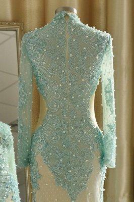 Elegant Long Sleeve High Neck Applique Floor Legnth Sheath Prom Dresses_8
