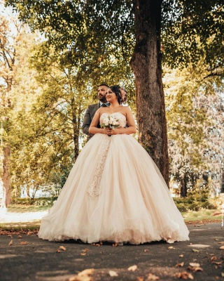 Wholesale Sweetheart Lace Tulle Ball Gowns Wedding Dresses_2