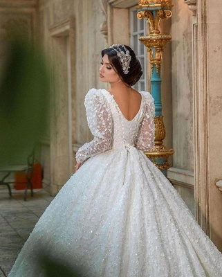 Extravagant Princess wedding dresses glitter lace sleeves_6