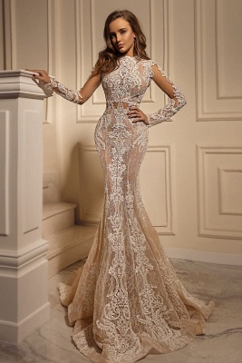 Sexy Mermaid Tulle Lace Long Sleeves Wedding Dress_1