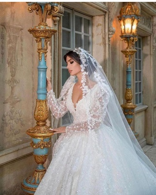 Extravagant Princess wedding dresses glitter lace sleeves_4