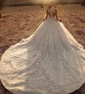 Luxury Ball Gown High-Neck Tulle Lace Long Sleeves Wedding Dress_3