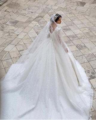 Extravagant Princess wedding dresses glitter lace sleeves_2