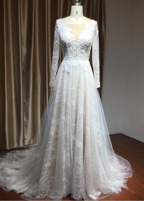 Graceful Long Sleeves Tulle V Neck Wedding Dresses With Lace Appliques_1