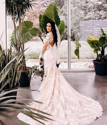 Alluring V-neck Long Sleeves Tulle Lace Wedding Dress_2