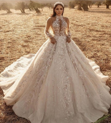Luxury Ball Gown High-Neck Tulle Lace Long Sleeves Wedding Dress_2