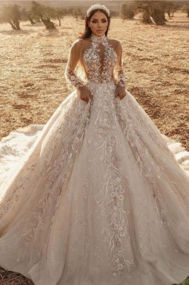 Luxury Ball Gown High-Neck Tulle Lace Long Sleeves Wedding Dress_1
