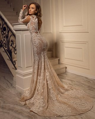 Sexy Mermaid Tulle Lace Long Sleeves Wedding Dress_2