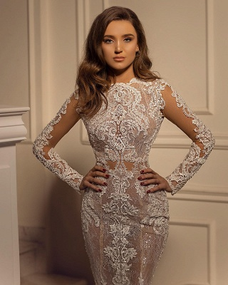 Sexy Mermaid Tulle Lace Long Sleeves Wedding Dress_3