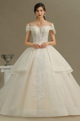 Elegant Off-the-Shoulder Tulle Lace Bridal Gown Ball Gown Floor Length Wedding Dress_1