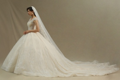 A Line Cap Sleeve Tulle Lace Wedding Dress Appliques Cathedral Garden Bridal Gowns_2