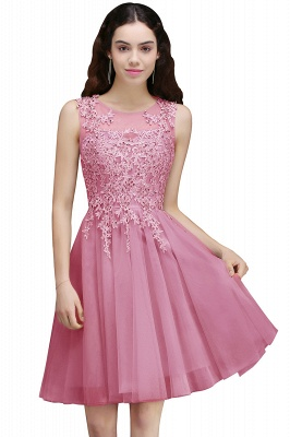 Lace Appliques Silver Jewel Sleeveless Short Homecoming Dress_1