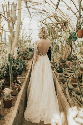 Simple Lace Tulle A Line wedding dress with sleeves_2