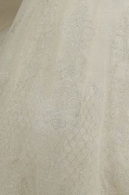 A Line Cap Sleeve Tulle Lace Wedding Dress Appliques Cathedral Garden Bridal Gowns_4