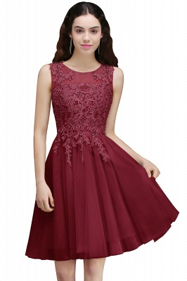 Lace Appliques Silver Jewel Sleeveless Short Homecoming Dress_2